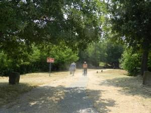 Lasciamo il Parco #Ungrispash pulito